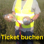 Pyrotechnik Workshop Ticket buchen